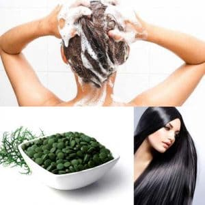 Espirulina para el cabello