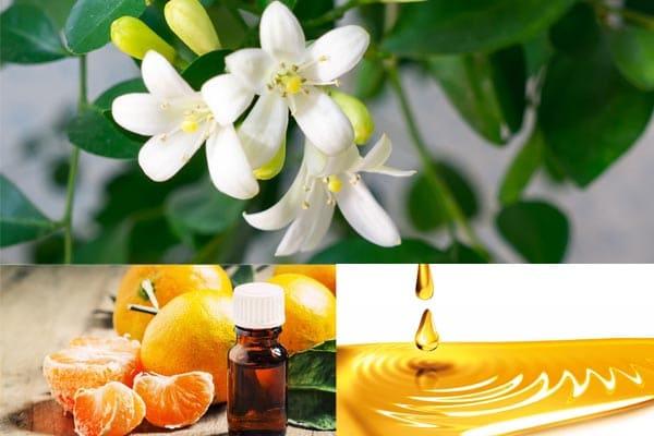 Aceite esencial de naranja agria